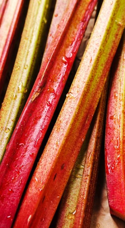 Apéritif pétillant à base de rhubarbe élaboré selon méthode traditionnelle