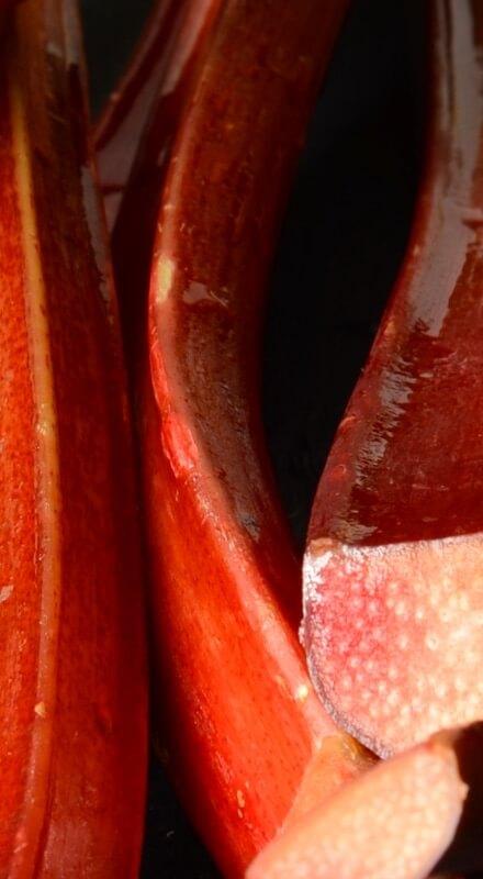 Vin apéritif pétillant fait avec de la rhubarbe selon méthode traditionnelle